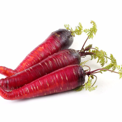 Carrot Atomic Red - Grimes Farm Market Seeds