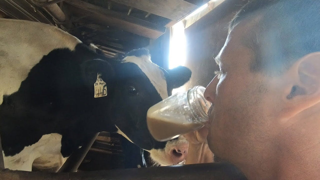 Check out Farmer Derek milking a cow for his Moolatte