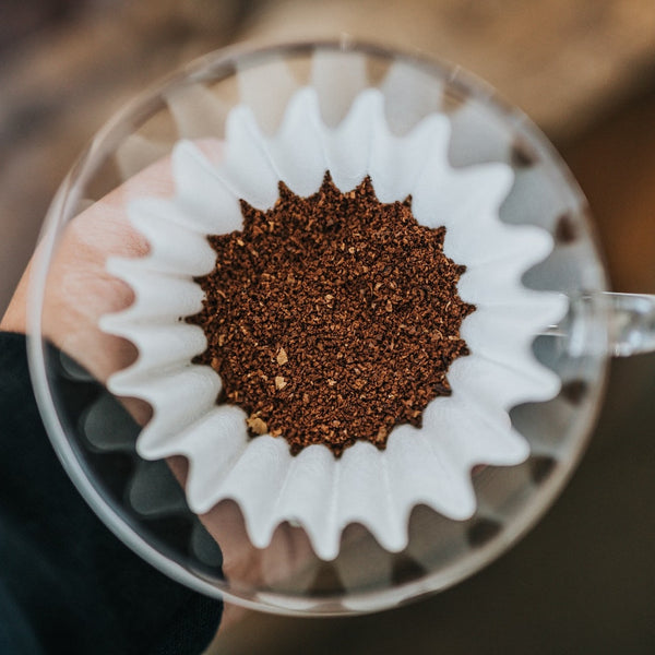 pour over coffee filter with coffee grounds
