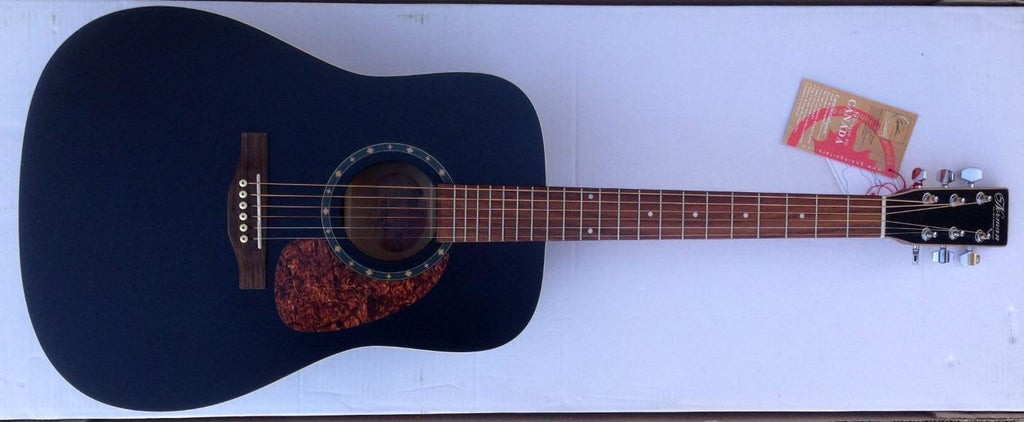Norman B18 Protege Cedar Black Dreadnought Acoustic Guitar