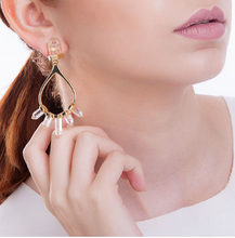 Load image into Gallery viewer, Pierre Crystal Earrings