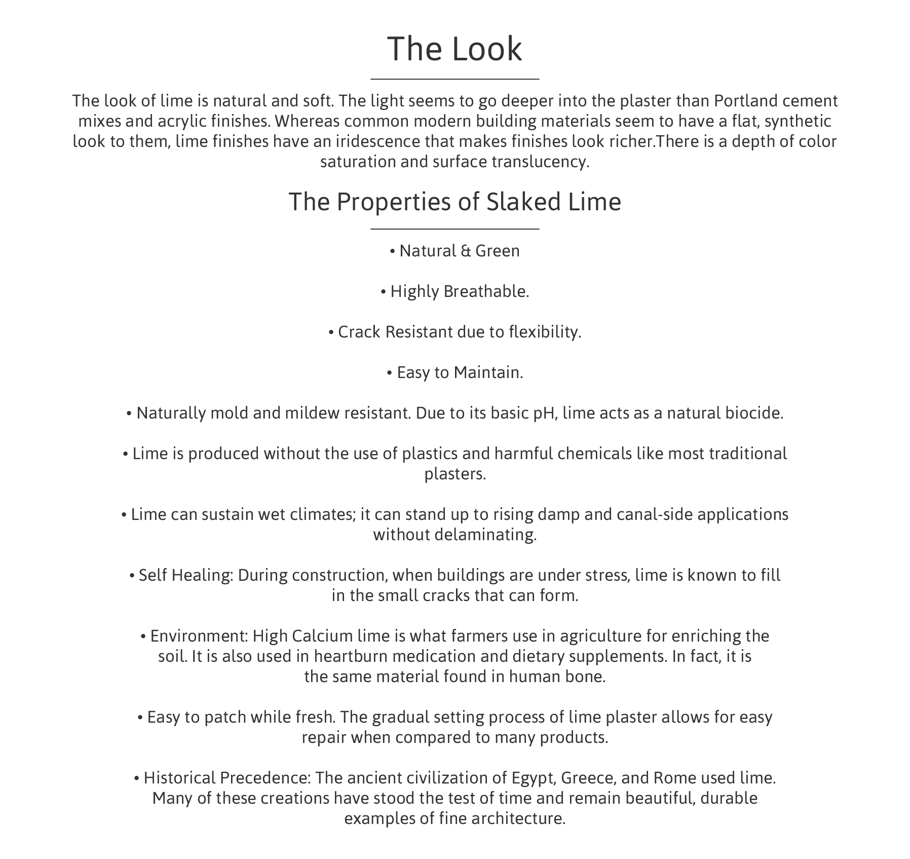 The look and characteristics of lime