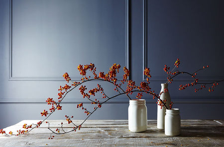 Fall Decor Essentials for Creating an Elevated Seasonal Look
