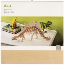 Cricut Accessories & Materials