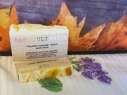 Seasons Change Goats Milk SoapSoaps- Barriault Ranch