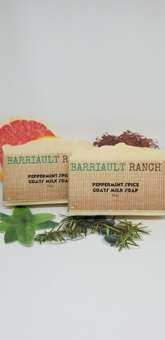 Peppermint Spice Goats Milk Soap- Barriault Ranch