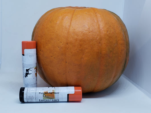 Pumpkin Pie Lip BalmLip Balm- Barriault Ranch