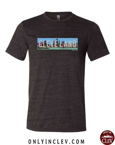 """Cleveland Skyline Panoramic"" T Shirt on Black"