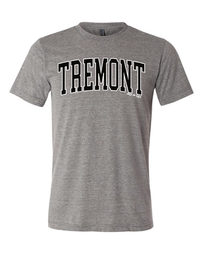 """Tremont"" Neighborhood Design on Gray - Only in Clev"