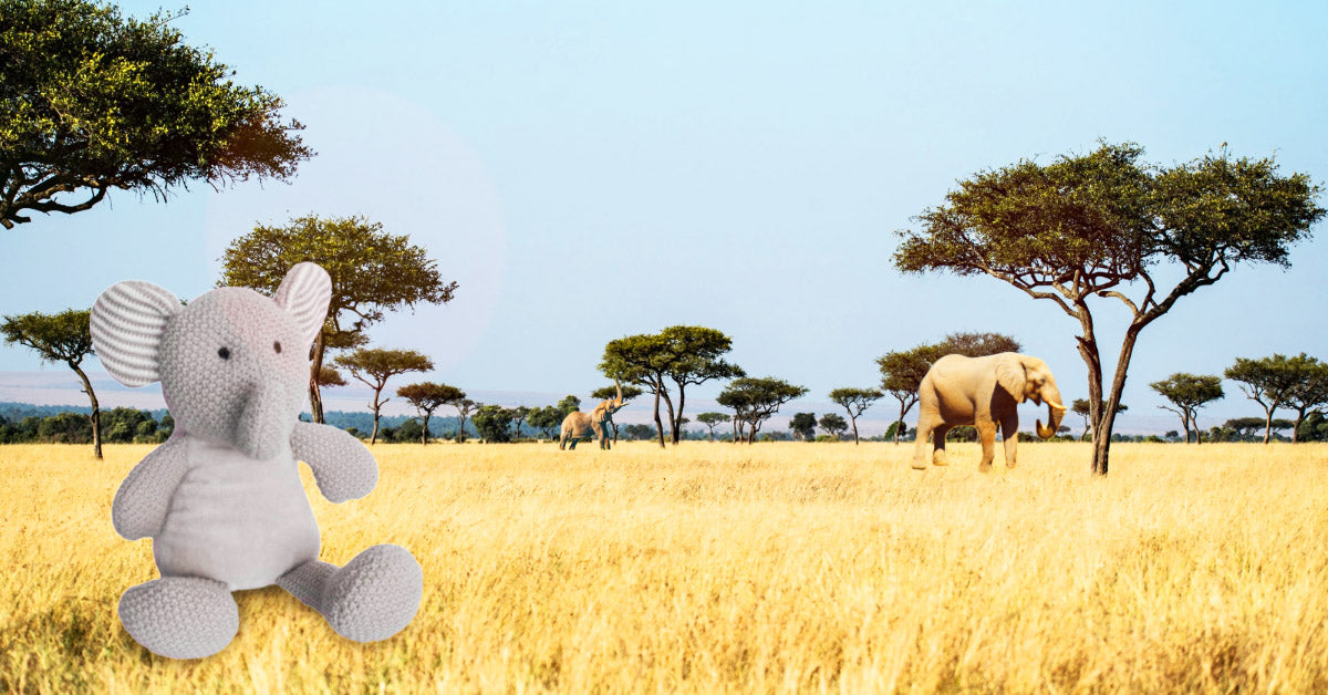 Win an adorable Elephant Plush Pal this February – Wild Baby Giveaway