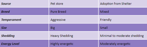 Comparison of Dogs from the Pet Store or Shelter