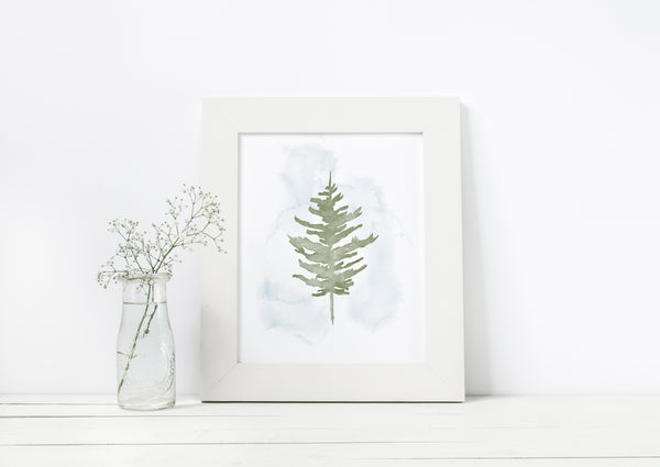 Pine Forest Collection