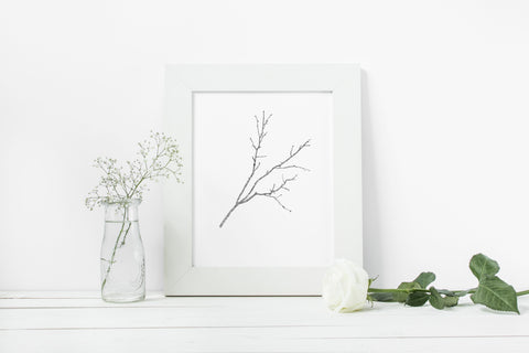Willow Branch Digital Download