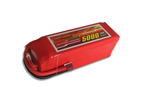 Dinogy Graphene 6s 5000mAh  30C Light Pattern plane Pack