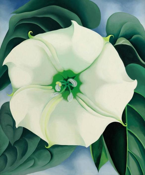 "Georiga O'Keefe's ""Jimsom Weed/White Flower No. 1"