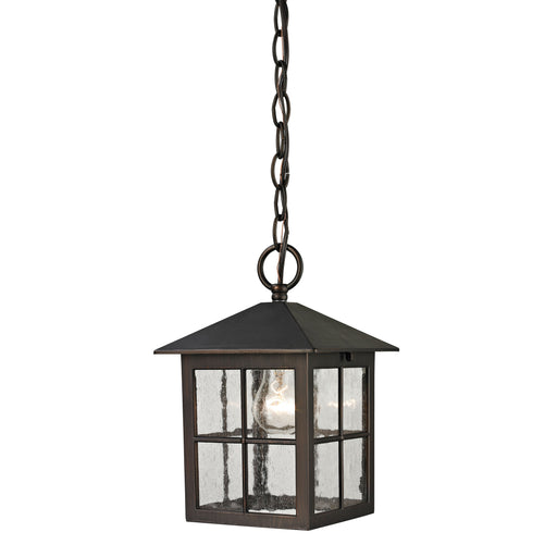 Thomas Lighting 8201EH/70 Shaker Heights 1 Light Pendant Lantern In Hazelnut Bronze - Small Hazelnut Bronze