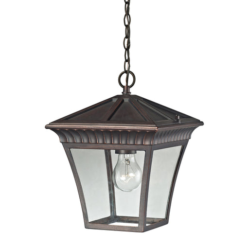 Thomas Lighting 8411EH/70 Ridgewood 1 Light Pendant Lantern In Hazelnut Bronze - Medium Hazelnut Bronze