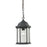 Thomas Lighting 8601EH/65 Spring Lake 1 Light Hanging Light In Matte Textured Black Matte Textured Black