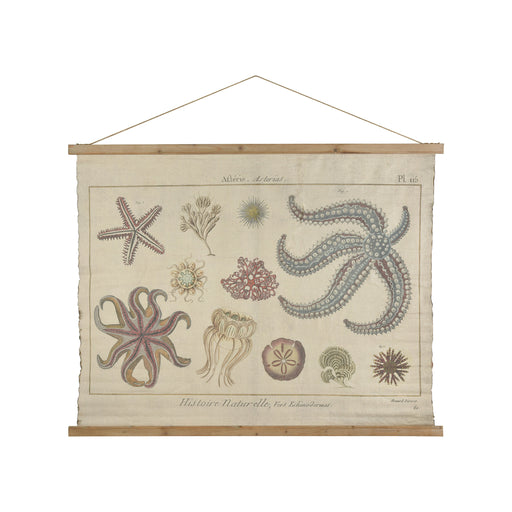 916465 Sea Life Tapestry Brown