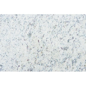 White Dallas Granite in 2 cm, Sold by the SF Available