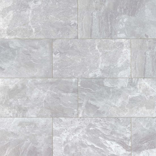 "Classic 12"" x 24"" Floor and Wall Tile in Bardiglietto, Sold by the Carton"