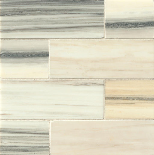 "Vanity Honed 3"" x 8"" Floor and Wall Tile in Zebrino, Sold by the Carton"