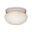 Thomas Lighting SL3268 Ceiling Essentials Ceiling Lamp
