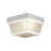 Thomas Lighting SL7578 Essentials Ceiling Lamp