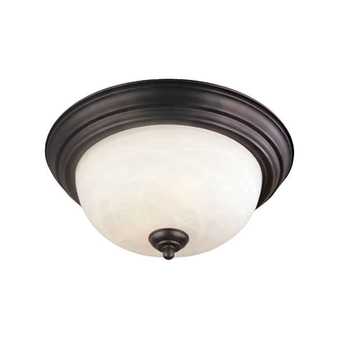 Thomas Lighting SL869163 Ceiling Essentials Ceiling Lamp