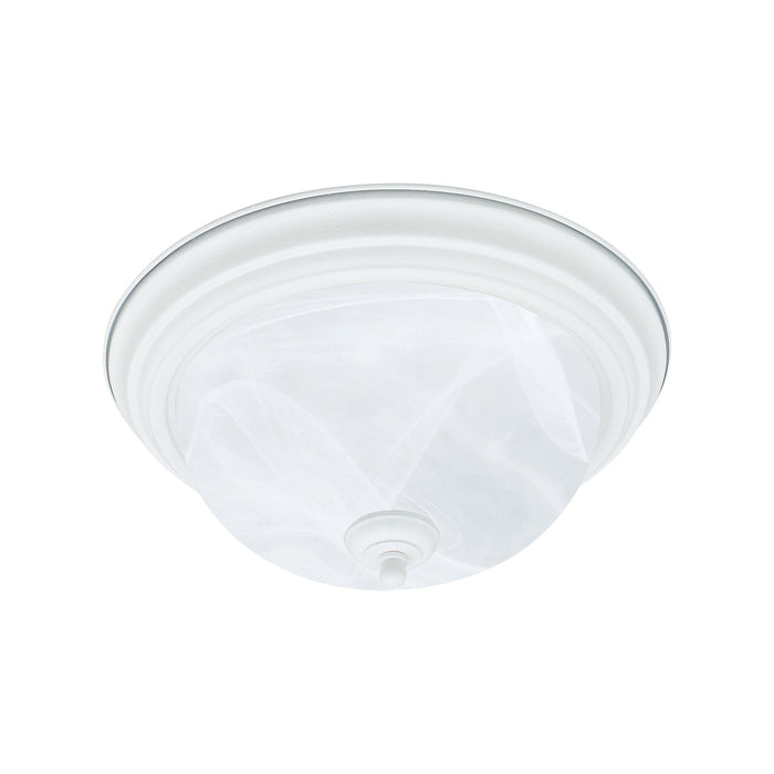 Thomas Lighting SL869218 Ceiling Essentials Ceiling Lamp