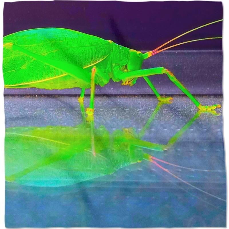 Grasshopper Reflection Bandana