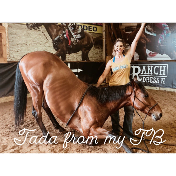 8 Things I've Learned from My OTTB