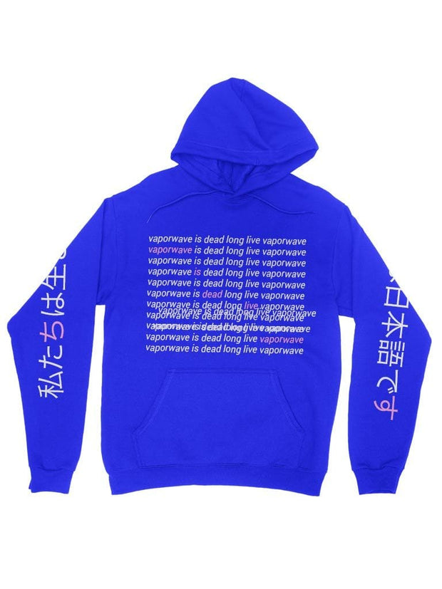 Vaporwave Is Dead Hoodie - Public Space xyz - vaporwave aesthetic clothing fashion, kawaii, pastel, pastelgrunge, pastelwave, palewave