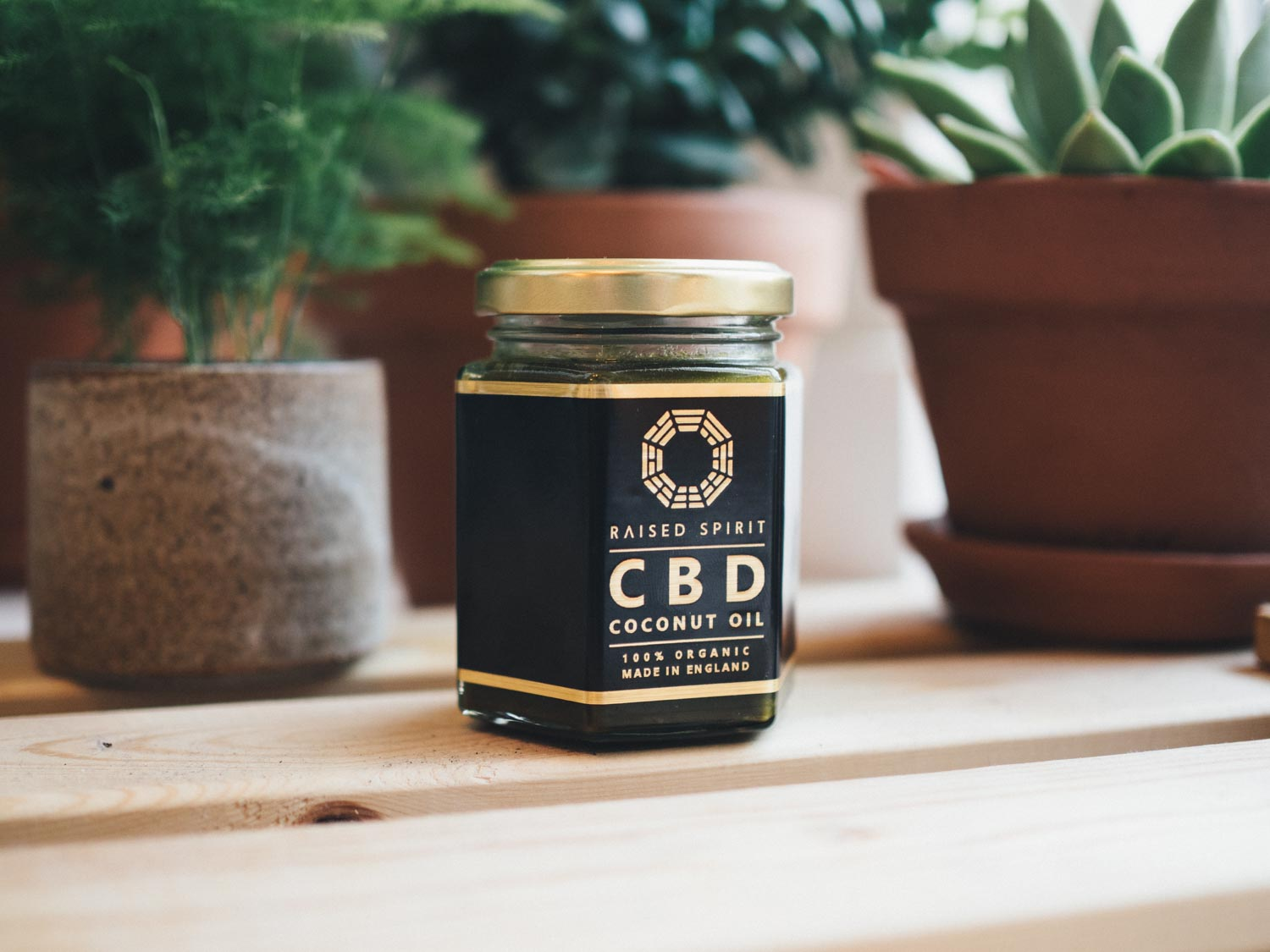 Raised Spirit Organic CBD Coconut Oil