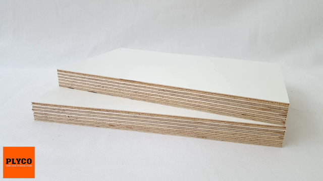 An image of Plyco's White Birch Film Face Plywood
