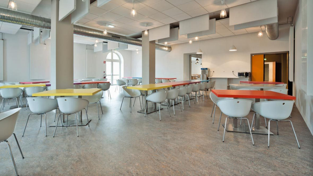 Linoleum flooring buyers guide things to know about forbo marmoleu