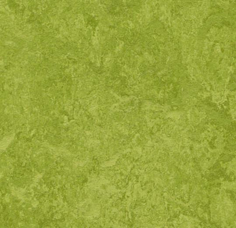 "Forbo Green MCT 3247 MCT - Marmoleum Composition Tile 13"" x 13"" MCT"