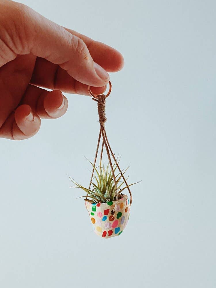 Mini Mosaic Hanging Planter W/Air Plant