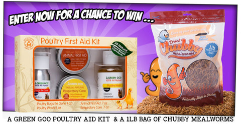 Win a Green Goo Poultry First Aid kit and a 1lb bag of Chubby Mealworms