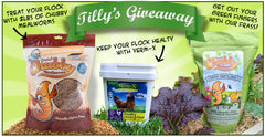Win a 4lb Tub of Verm X for Poultry and a 2lb Chubby Mealworm Frass pack