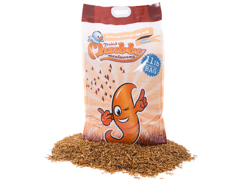 11Lbs Chubby Dried Mealworms