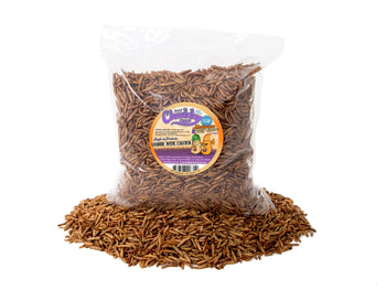 1lb Chubby Mix (Mealworm & Calci Worm Combo) - Chubby Mealworms