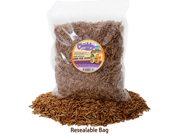 2lb Chubby Mix (Mealworm & Black Soldier Fly Larvae Combo)