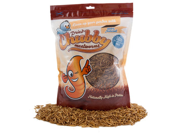 2Lbs Chubby Dried Mealworms