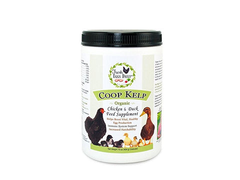 Fresh Eggs Daily Coop Kelp Organic Chicken and Duck Feed Supplement 1LB - Chubby Mealworms