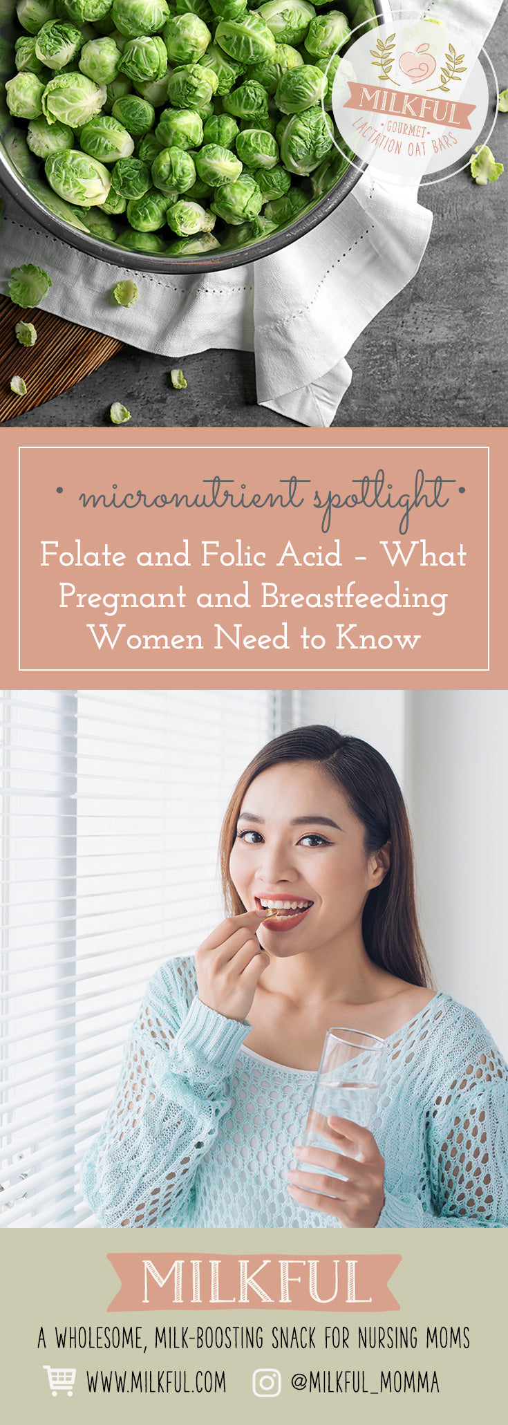 Folate and Folic Acid – What Pregnant and Breastfeeding Women Need to Know
