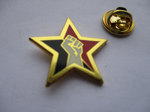FIST STAR (gold) small anarcho PUNK METAL BADGE solidarity socialist