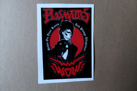 THE PLASMATICS large PUNK VINYL STICKER - Savage Amusement