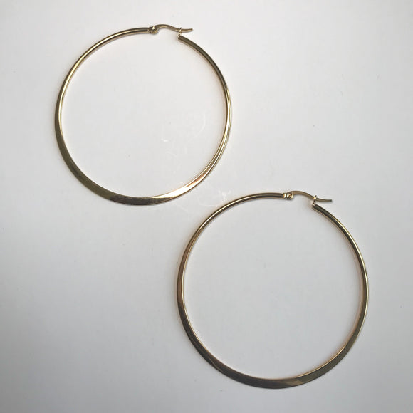 Stainless Steel Hoops