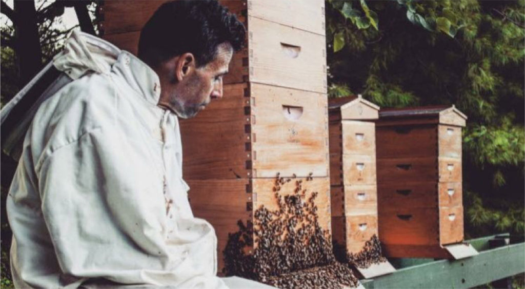 A Beekeeper's Passion